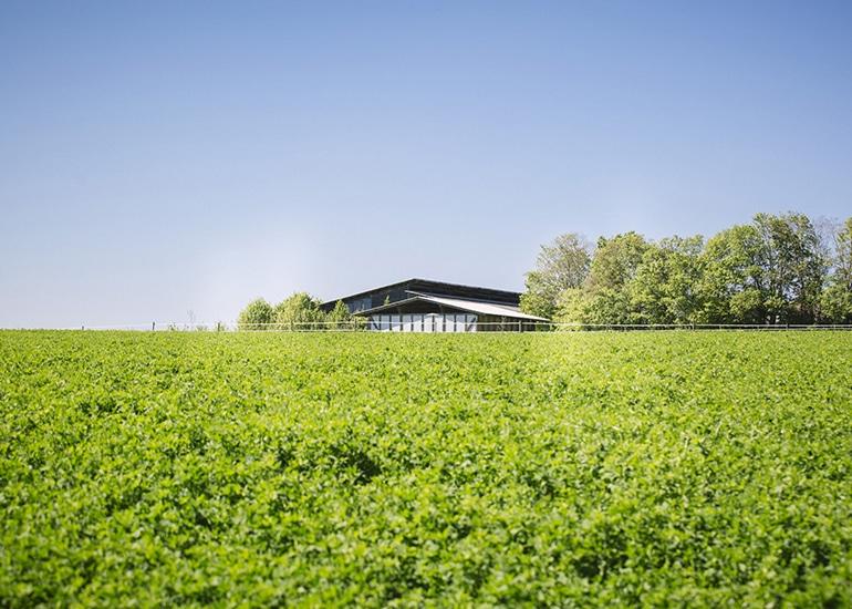 Schönblickhof hinter grünen Feldern